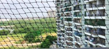 Rede para janela